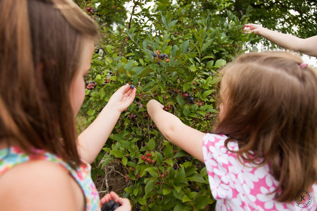 Cousins Picking Blueberries