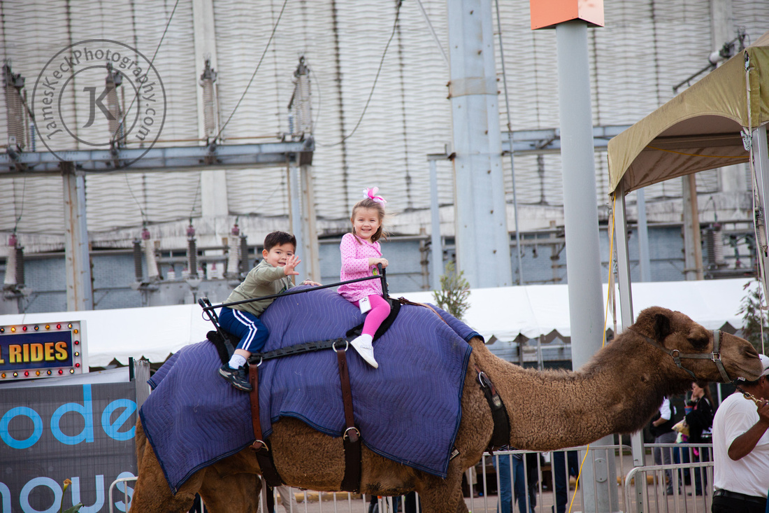Twins Riding Camel at Houston Rodeo